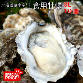 水産物応援企画!【マルえもん 3Lサイズ10個】北海道厚岸産本養殖牡蠣生食用