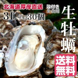【マルえもん 3Lサイズ30個】北海道厚岸産本養殖牡蠣生食用