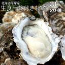 【マルえもん 3Lサイズ20個】北海道厚岸産本養殖牡蠣生食用