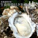 【マルえもん LLサイズ50個】北海道厚岸産本養殖牡蠣生食用
