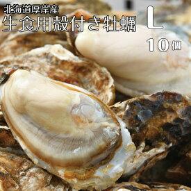【マルえもん Lサイズ10個】北海道厚岸産本養殖牡蠣生食用