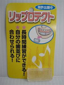 唇の保護に リップロテクト