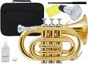 Kaerntner ( ケルントナー ) KTR33P ポケットトランペット ゴールド 新品 管楽器 ミニトランペット B♭ 管体 金色 ミ…