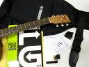 YAMAHA ( ヤマハ ) F620パック【アコースティックギター 初心者 入門セット F-620 】