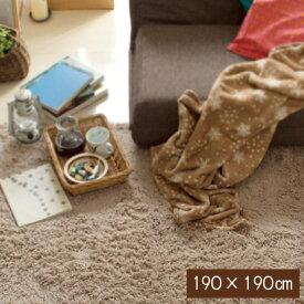 シャギーラグ 洗える ラグ ラグマット 190×190cm 無地ラグ カーペット ラグ マット 洗える 絨毯 じゅうたん シャギー3222