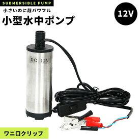 水中ポンプ 小型 12V ステンレス製 丈夫 海水対応 ワニ口クリップ 3mケーブル 手元スイッチ