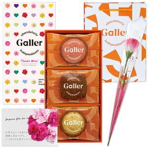 遅れてごめんね 母の日ギフト 花とスイーツ ベルギー王室御用達 ガレー クッキー 詰め合わせ 12枚入 & カーネーション (造花) & メッセージカード 母の日 2021 花 スイーツセット お花 スィ