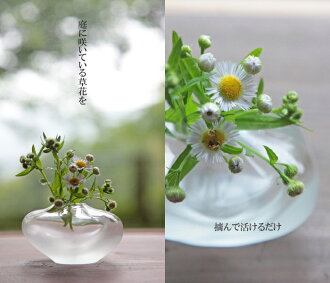 """There is a spider"", and the mail order of the glass vase, vase, flower bass which is good to a small vase, a vase, a wedding present sells a small vase"