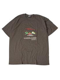 【インポート/あす楽】Guadalajara MEXICO S/S TEE brown 2 Tシャツ グアダラハラ メキシコ 刺繍 大きいサイズ ビッグT ブラウン2
