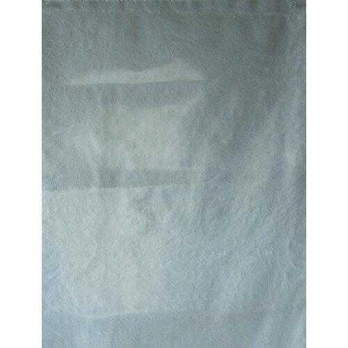 [アスベスト回収袋](株)島津商会 Shimazu 回収袋 透明中(V) B-2 1PK(50枚入)【335-4288】