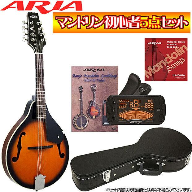 マンドリン超オトクな5点セット!/ARIA(アリア)AM-20+小物4点/AM20/ブルーグラス【送料無料】【smtb-KD】【RCP】:-p5
