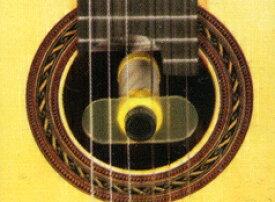 ロッコーマン/ROKKOMANN  OH-5  Oasis Guitar Plus Humidifier/OH5 オアシスギタープラスヒューミディファイア(加湿器) 【送料無料】【smtb-KD】【RCP】:-p2