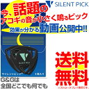 【3枚セットパック】驚異の弱音効果! サイレントピック SP-3 SILENT PICK ピック型弱音器 SP3【送料無料】【smtb-KD…