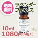【送料無料】ビオスパ エッセンシャルオイル(精油) ラベンダー・フランス 10ml
