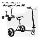 『Gangoo-Cart SE』 取外し 折畳 可能 カート オプションパーツ ミニセグウェイ セグウェイ バランススクーター は付…
