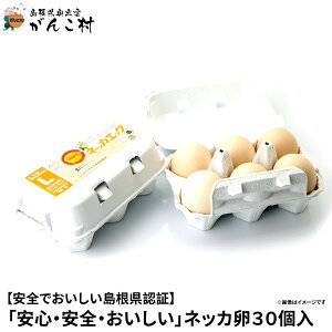 卵「安心・安全・おいしい」ネッカ卵30個入(玉子Lサイズ・紙製卵パック入/10個×3)卵かけご飯に!国産/生卵【送料無料】【楽ギフ_のし】【楽ギフ_のし宛書】