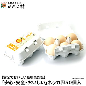 卵「安心・安全・おいしい」ネッカ卵50個入(玉子Lサイズ・紙製卵パック入/10個×5)卵かけご飯に!国産/生卵【送料無料】【楽ギフ_のし】【楽ギフ_のし宛書】