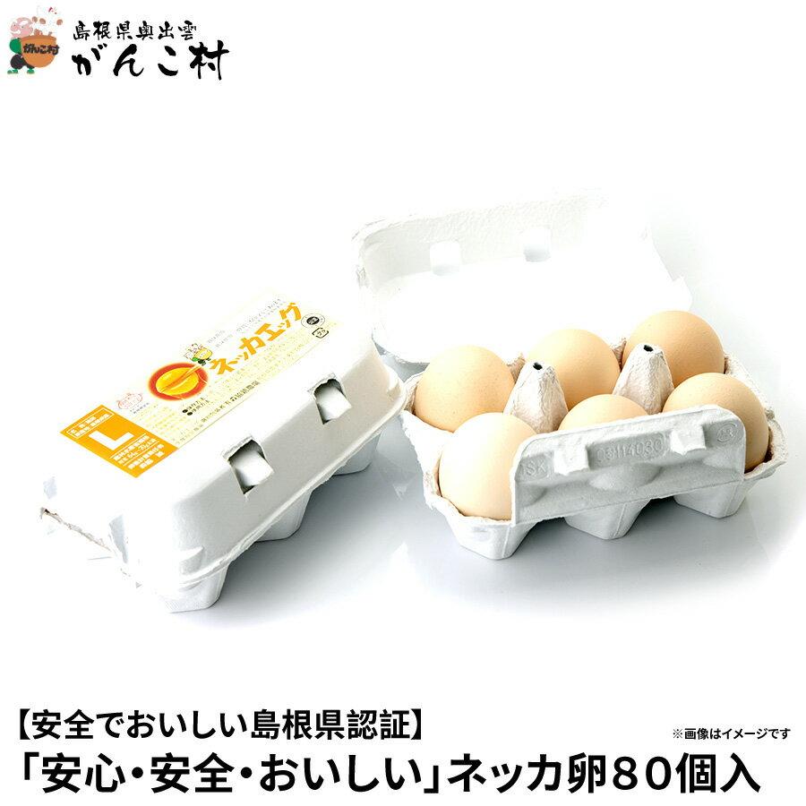 卵「安心・安全・おいしい」ネッカ卵80個入(玉子Lサイズ・紙製卵パック入/10個×8)卵かけご飯に!国産/生卵(たまご60個+割れ保証20個)【送料無料】【楽ギフ_のし】【楽ギフ_のし宛書】【RCP】05P06Aug16