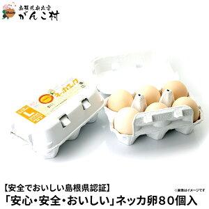 卵「安心・安全・おいしい」ネッカ卵80個入(玉子Lサイズ・紙製卵パック入/10個×8)卵かけご飯に!国産/生卵【送料無料】【楽ギフ_のし】【楽ギフ_のし宛書】