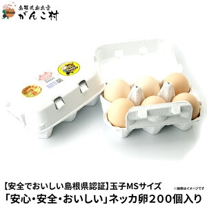 ネッカ卵200個入り(玉子MSサイズ)業務用に!国産/生卵【送料無料】【楽ギフ_のし】【楽ギフ_のし宛書】