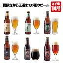 クラフトビール 6種6本 飲み比べセット<夏限定オレンジとパイナップルのフルーツビール入 地ビール 詰め合わせ>【あす楽:平日14時〆…
