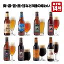 クラフトビール 8種8本 飲み比べセット <湘南ゴールド、世界一IPAビール、チョコビール入> 【地ビール 詰め合わせ】【あす楽】お中元…