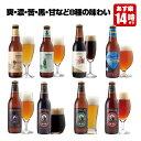クラフトビール 8種8本 飲み比べセット <夏限定フルーツビール2種、黒ビール、IPAビールなど 地ビール詰め合わせ>【あす楽】【サンク…