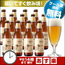 オレンジ弾けるフルーツビール<湘南ゴールド>12本セット【本州送料無料】【あす楽】春夏限定クラフトビール(地ビール)
