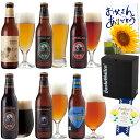 クラフトビール 6種6本 飲み比べセット <夏限定 湘南ゴールド、IPAビール、黒ビール 入>【地ビール 詰め合わせ】サンクトガーレン【…