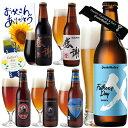 父の日ギフト【父の日3大特典付】父の日限定IPAビール入 クラフトビール6種6本 飲み比べセット <感謝ビール、ペールエール、世界一のI…