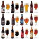 サンクトガーレン クラフトビール 12種 飲み比べセット <感謝ビール、世界一のIPAビール、ペールエール、冬限定アップルシナモンエー…