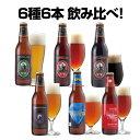 クラフトビール 6種6本 飲み比べセット<冬限定アップルシナモンエール、世界一のIPAビールほか 地ビール 詰め合わせ>【本州送料無料…