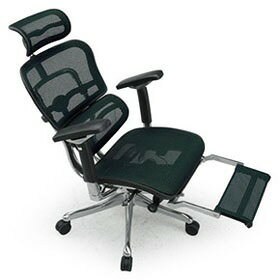 Ergohuman エルゴヒューマン プロ ハイブリット機能 オットマン内臓 足置き付き パソコンチェア PCチェア オフィスチェア ビジネスチェア ワークチェア チェア チェアー 椅子 イス いす オフィス 高機能 メッシュ 調節機能 緑 グリーン EHP-LPL-HB KM14