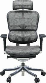 エルゴヒューマン プロ ハイバック ハイブリット機能 パソコンチェア PCチェア ゲーミングチェア ゲーム 株 オフィスチェア 学習椅子 学習チェア 仕事用チェア 事務いす 事務椅子 チェア 椅子 イス 高級感 かっこいい