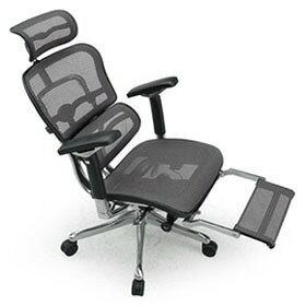 Ergohuman エルゴヒューマン プロ ハイブリット機能 オットマン内臓 足置き付き パソコンチェア PCチェア オフィスチェア ビジネスチェア ワークチェア チェア チェアー 椅子 イス いす オフィス 高機能 メッシュ 調節機能