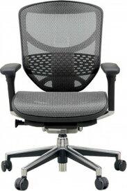 エルゴヒューマン エンジョイ ローバック ハイブリット機能 パソコンチェア PCチェア ゲーミングチェア ゲーム 株 オフィスチェア 学習椅子 学習チェア 仕事用 事務いす 事務椅子 チェア 椅子 イス 高級感 かっこいい