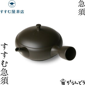 急須 すすむ急須 常滑焼 黒 すすむ屋茶店 ティーポット 茶器 陶器 父の日 母の日
