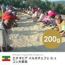 【200g】エチオピア イルガチェフェ G-1 コンガ農協(スペシャルティ/シングル/コーヒー豆)