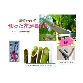 「濃州兼松作 花切かれず」切花専用はさみHA-170〜切った花が長持ちする鋏♪トゲ取り機能付き