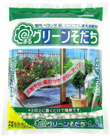 花ごころ はなまるグリーンそだち1.4kg