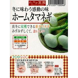 旬の味覚♪【ホームタマネギ】約20球 すこやか菜園野菜