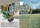 エコポットECO POTブラウン【5個セット】BEL901BR