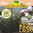 コケそうじスプレー500g【パネフリ工業】