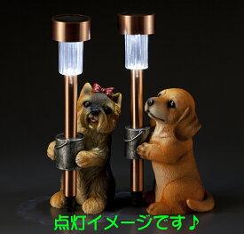 子犬付ソーラーライト 【ダックス】No.837 【茶色】