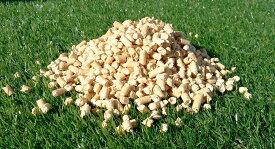 【送料無料】木質ペレット 22kg 猫砂 ホワイトペレットお買い得 20kgより2kg多い22kgで販売中 運び易い11kg入り2袋入り