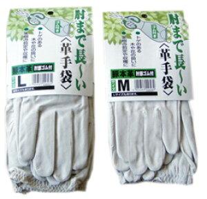 柚子収穫用革手袋 M L 肘まで長い バラなどの手入れにも ゆず 薔薇 手入れ
