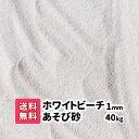 砂 砂遊び【送料無料】40kg(20kg袋×2)砂場の砂 ホワイトビーチ遊び砂 1mm さらさらの砂 白い砂 砂場の砂 子ども 幼…