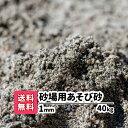 砂場用砂【送料無料】40kg(10kgあたり1,240円)1mm 放射線測定済み 安心安全 遊び砂 砂遊び 遊び砂 ベランダ 室内 泥ん…