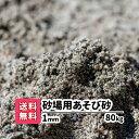 砂場用砂【送料無料】80kg(10kgあたり1,240円)1mm 放射線測定済み 安心安全 遊び砂 砂遊び 遊び砂 ベランダ 室内 泥ん…