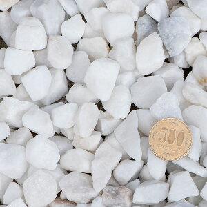 白玉砂利20mm〜30mm500円玉との比較